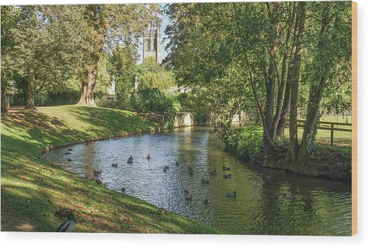 Magdalen From The River Cherwell Wood Print