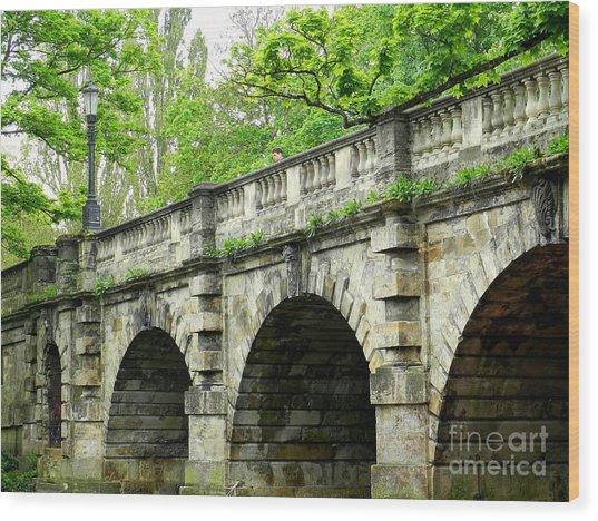 Magdalen's Ancient Bridge Wood Print