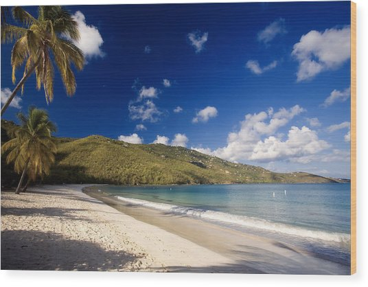 Magens Bay Morning St Thomas Us Virgin Islands Wood Print by George Oze