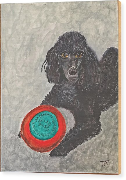Maggie And Her Frisbee Wood Print