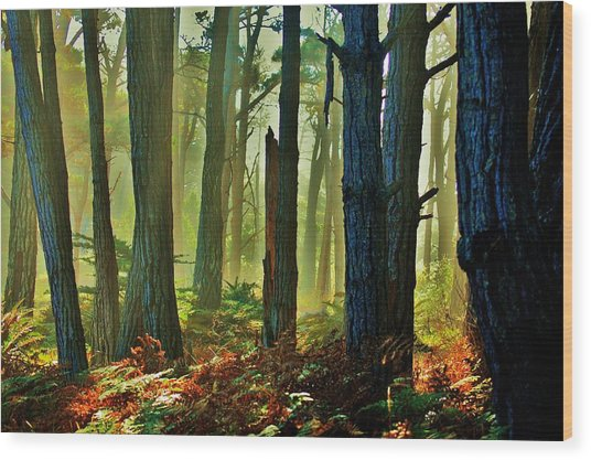 Magic Forest Wood Print