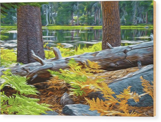 Magic Light Lake Wood Print