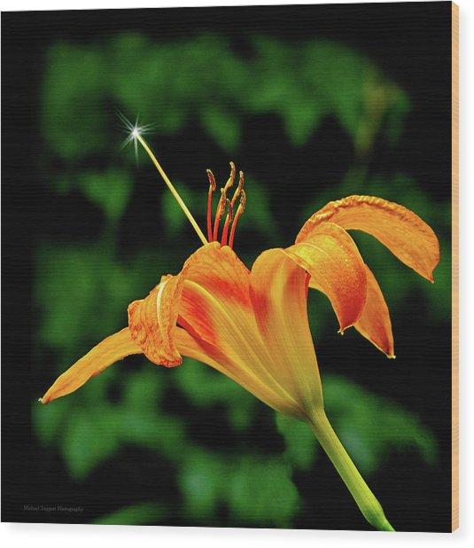 Magic Wand - Lily Wood Print by Michael Taggart II