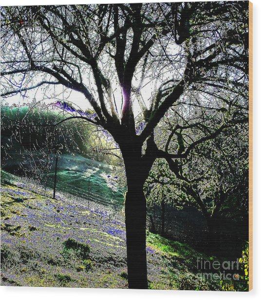 Magical Morning Wood Print by JoAnn SkyWatcher