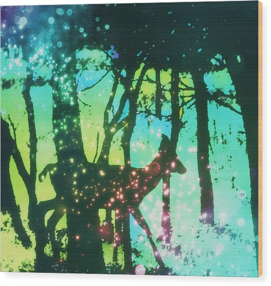 Magical Nature Wood Print