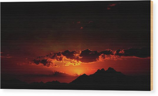 Magical Sunset In Africa 2 Wood Print