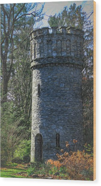 Magical Tower Wood Print