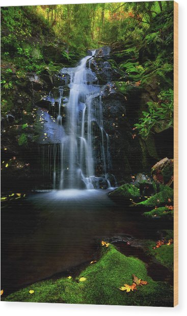 Magical Waterfall Above Spruce Falls In Tremont Smoky Mountains Tennessee  Wood Print