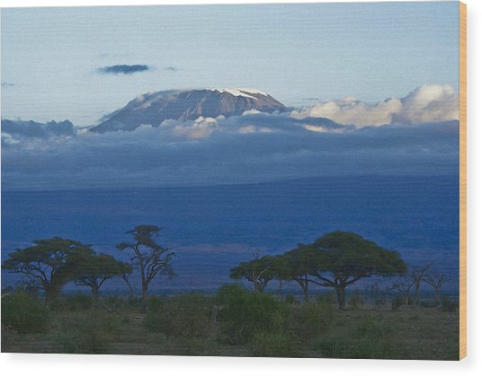 Magnificent Kilimanjaro Wood Print