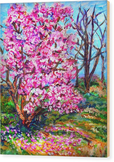Magnolia - Early Spring Wood Print by Laura Heggestad