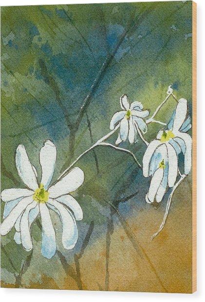 Magnolia 3 Of 3 Wood Print