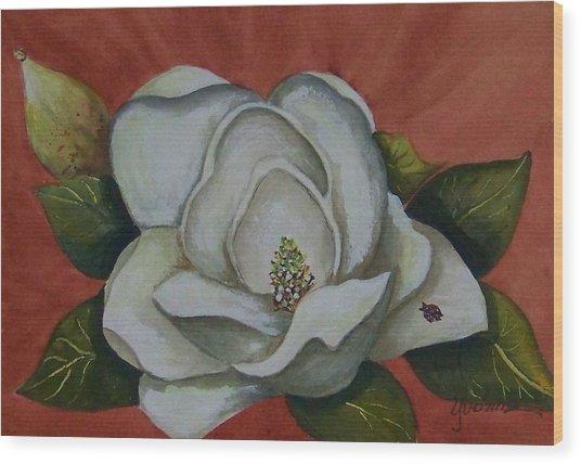 Magnolia Bloom With Ladybug Wood Print by Yvonne Kinney