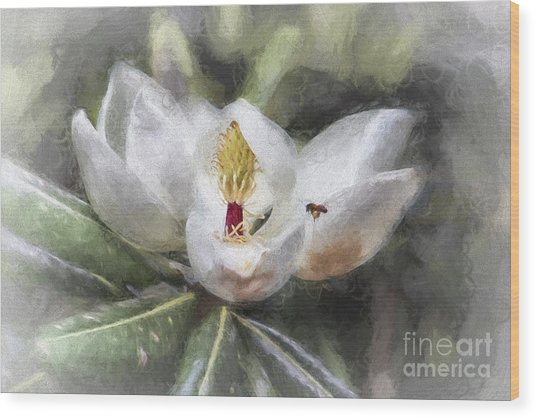 Magnolia Harvest Wood Print
