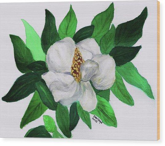 Magnolia I Wood Print