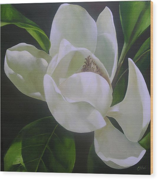 Magnolia Light Wood Print