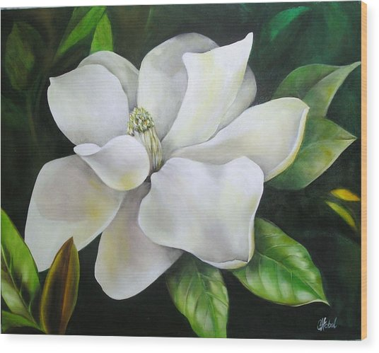 Magnolia Oil Painting Wood Print