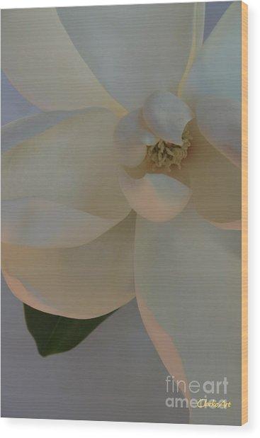 Moody Magnolia  Wood Print