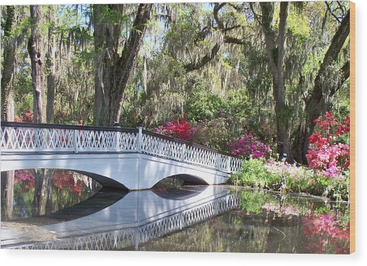 Magnolia Plantation Series 1 Wood Print by Melanie Snipes
