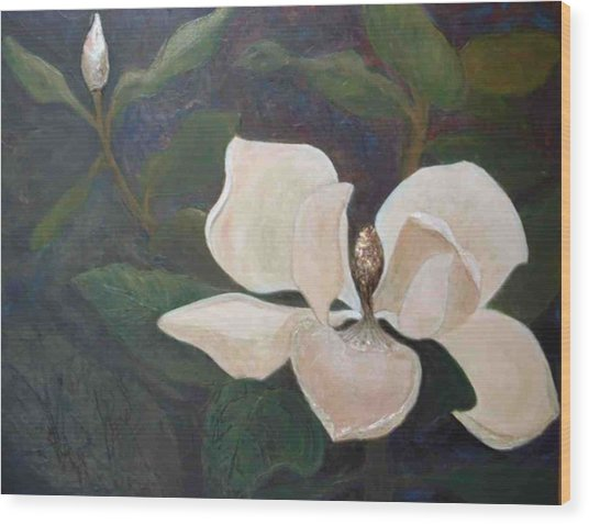 Magnolia Spring Wood Print by Win Peterman