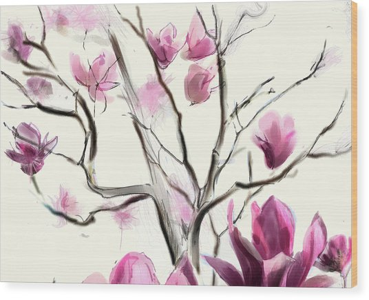 Magnolias In Bloom Wood Print