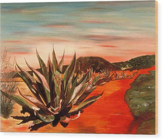 Magueys At Sunset Wood Print by Oudi Arroni