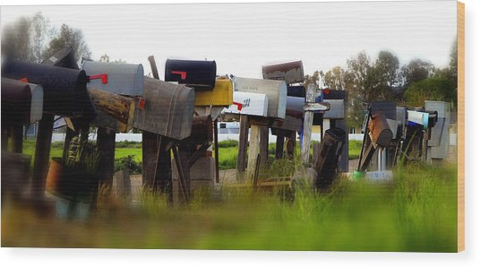 Mailboxes 2 Wood Print