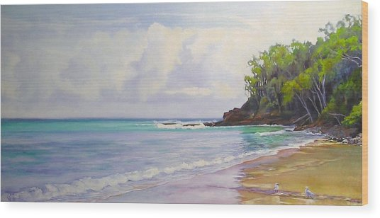 Main Beach Noosa Heads Queensland Australia Wood Print