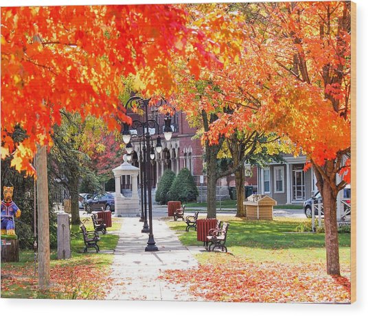 Main Street In The Fall Wood Print