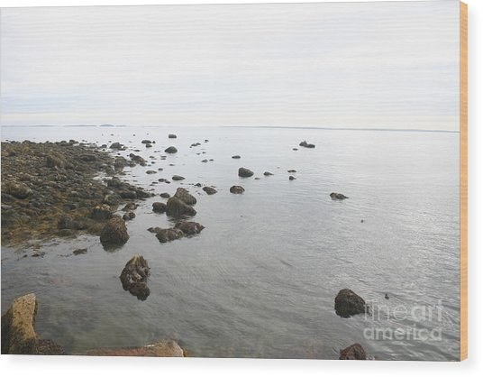Maine Bay Wood Print by Dennis Curry