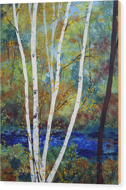 Maine Birch Stream Wood Print by Laura Tasheiko