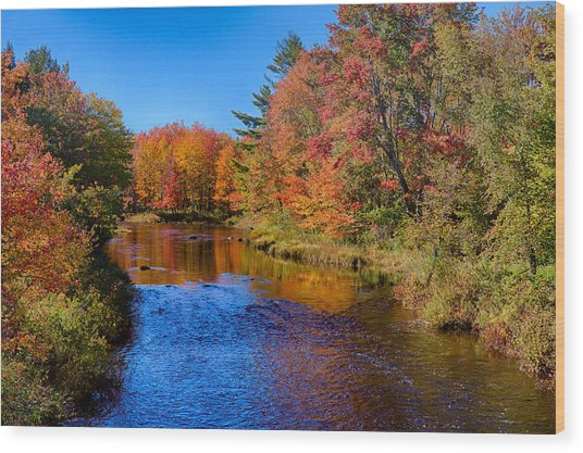 Maine Brook In Afternoon With Fall Color Reflection Wood Print