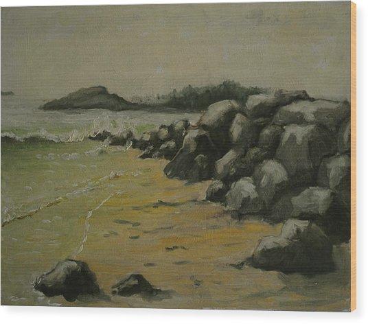 Maine Coast Usa Wood Print by Chris  Riley