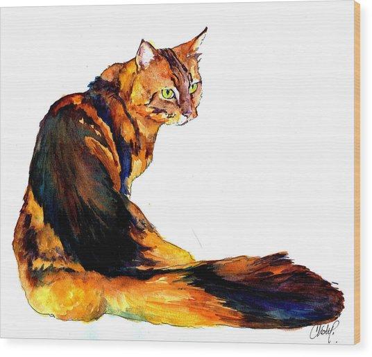Maine Coon Cat Portrait Wood Print