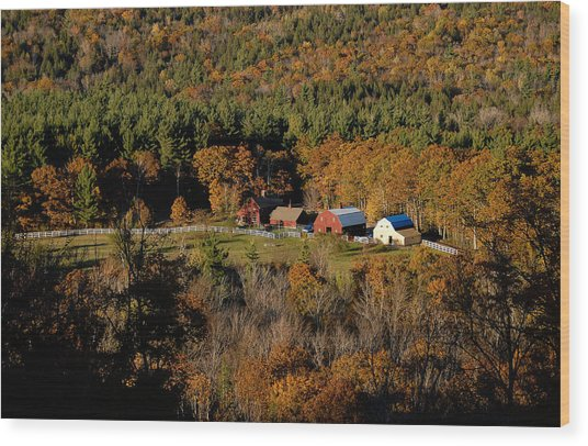 Maine Fall Colors Wood Print by Gary Cloud