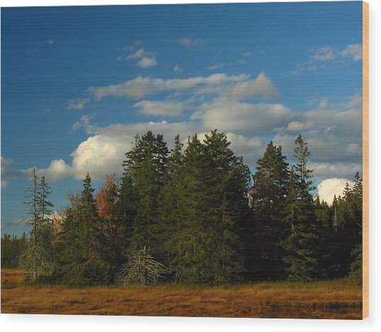 Maine Landscape Photography Wood Print by Juergen Roth