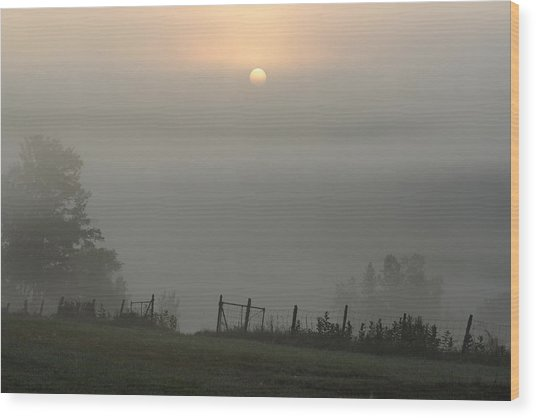 Maine Morning Wood Print