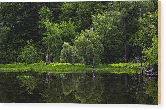 Maine Reflections Wood Print