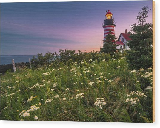 Maine West Quoddy Head Lighthouse Sunset Wood Print