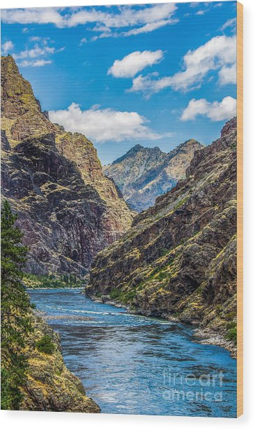Majestic Hells Canyon Idaho Landscape By Kaylyn Franks Wood Print