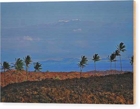 Majestic Mauna Kea Wood Print