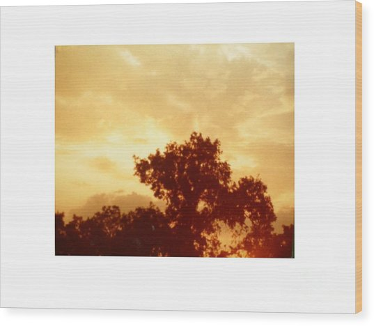 Majestic Sky Wood Print by Hal Newhouser