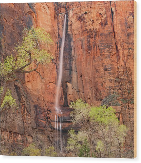 Wood Print featuring the photograph Majestic Spring by Leland D Howard