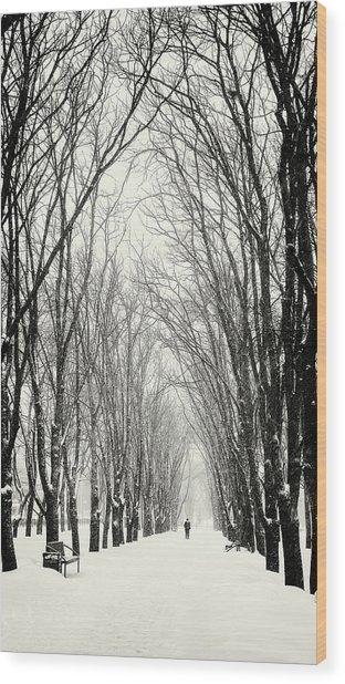 Majestic Walk. Chernihiv, 2018. Wood Print