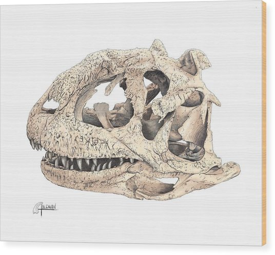 Majungasaur Skull Wood Print