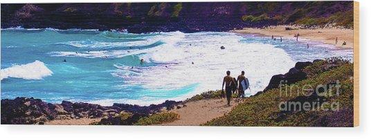 Panorama - Makapu'u Beach Park, Oahu, Hawaii  Wood Print by D Davila