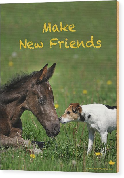 Make New Friends Wood Print