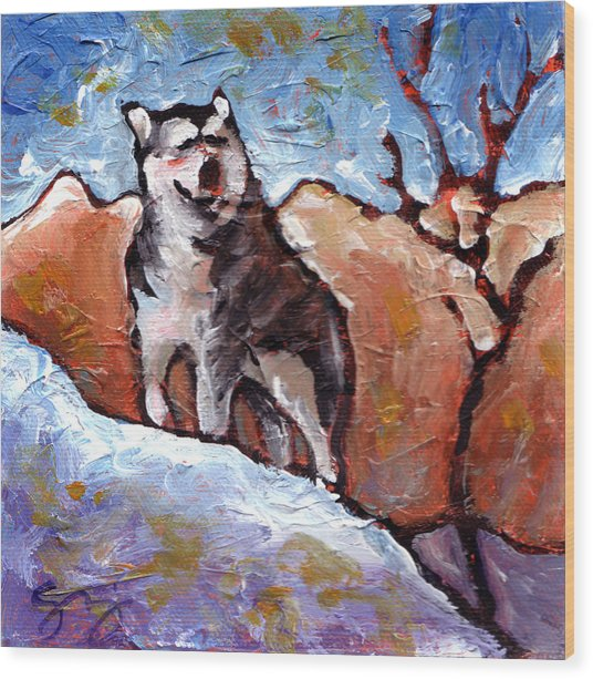 Malamute Wood Print by Sara Zimmerman