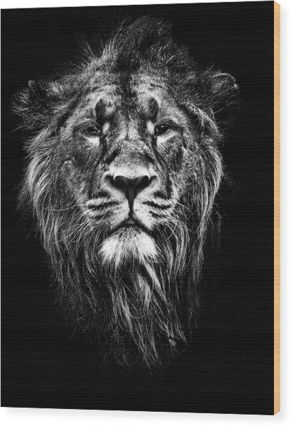 Male Asiatic Lion Wood Print