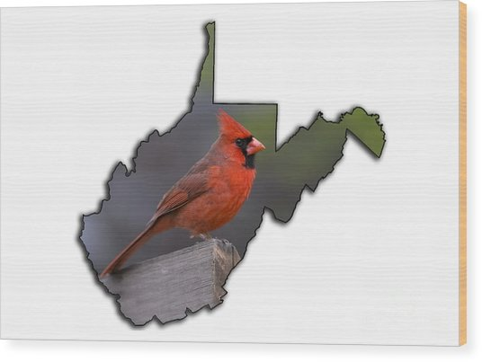 Male Cardinal Perched On Rail Wood Print
