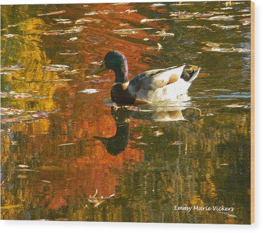 Mallard Duck In The Fall Wood Print